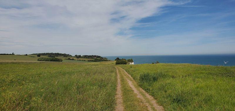 <p>The quiet bit of the path</p>